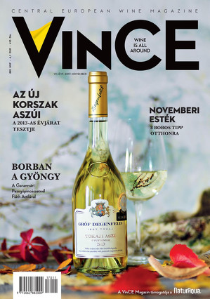 Vince magazine cover 17