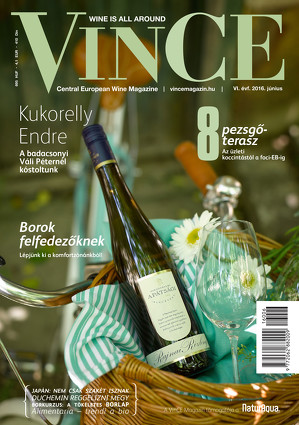 Vince magazine cover 11