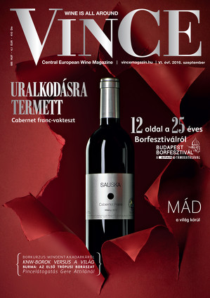 Vince magazine cover 13